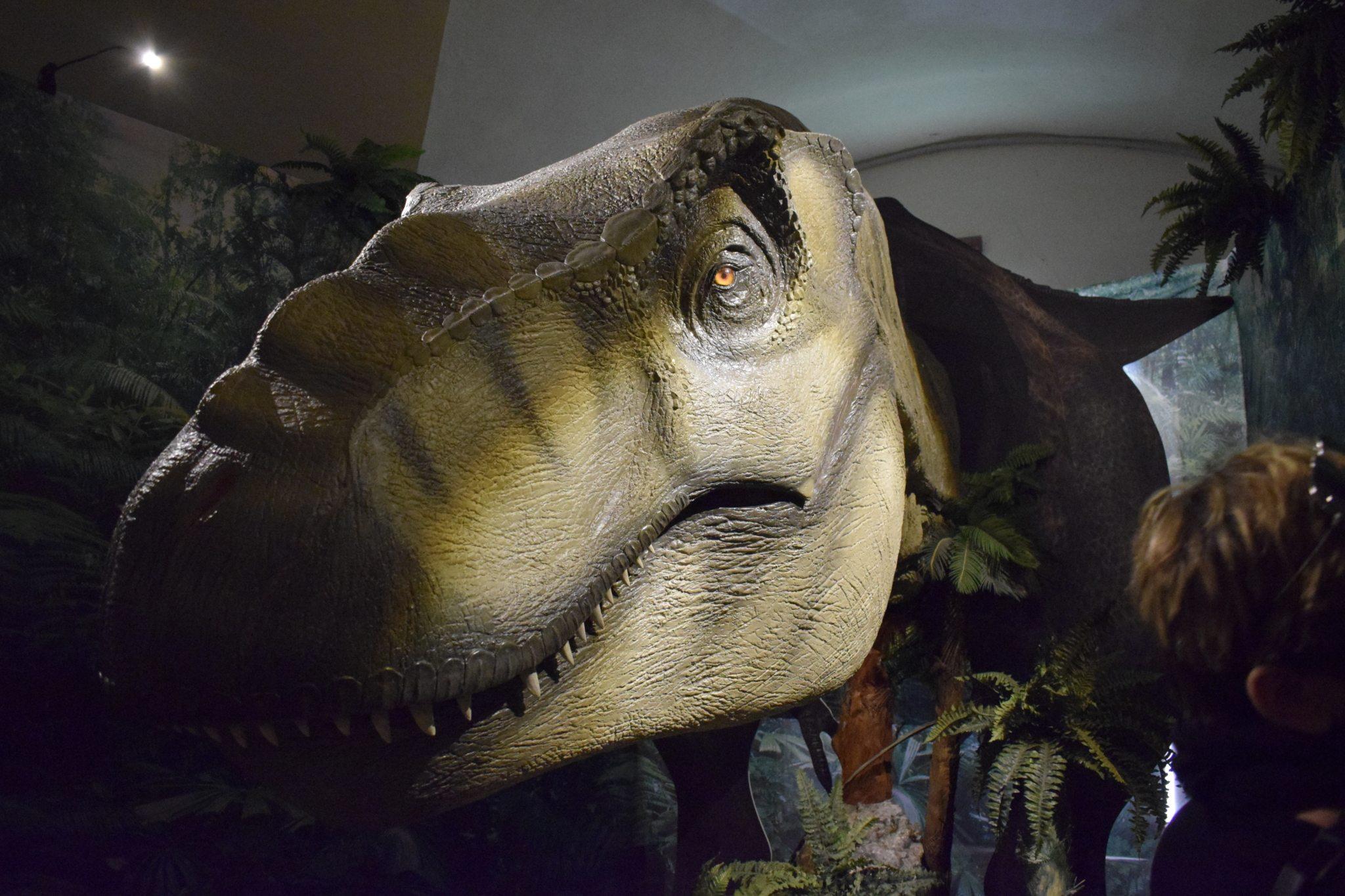Tra dinosauri e monumenti barocchi, alla scoperta di Calci (Pisa)