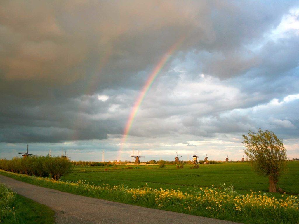 Kinderdijk mulini e arcobaleno