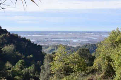 massarosa: vista del lago di Massacciucoli dall'alto