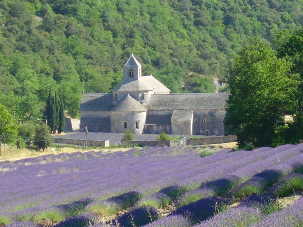 abbazia senanque