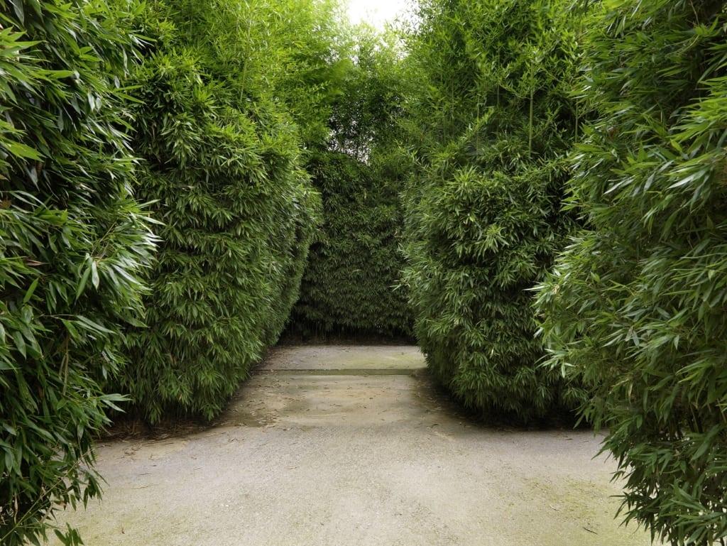 parma labirinto franco maria ricci