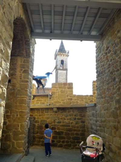 castello guidi interni