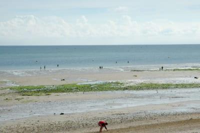 Juno Beach