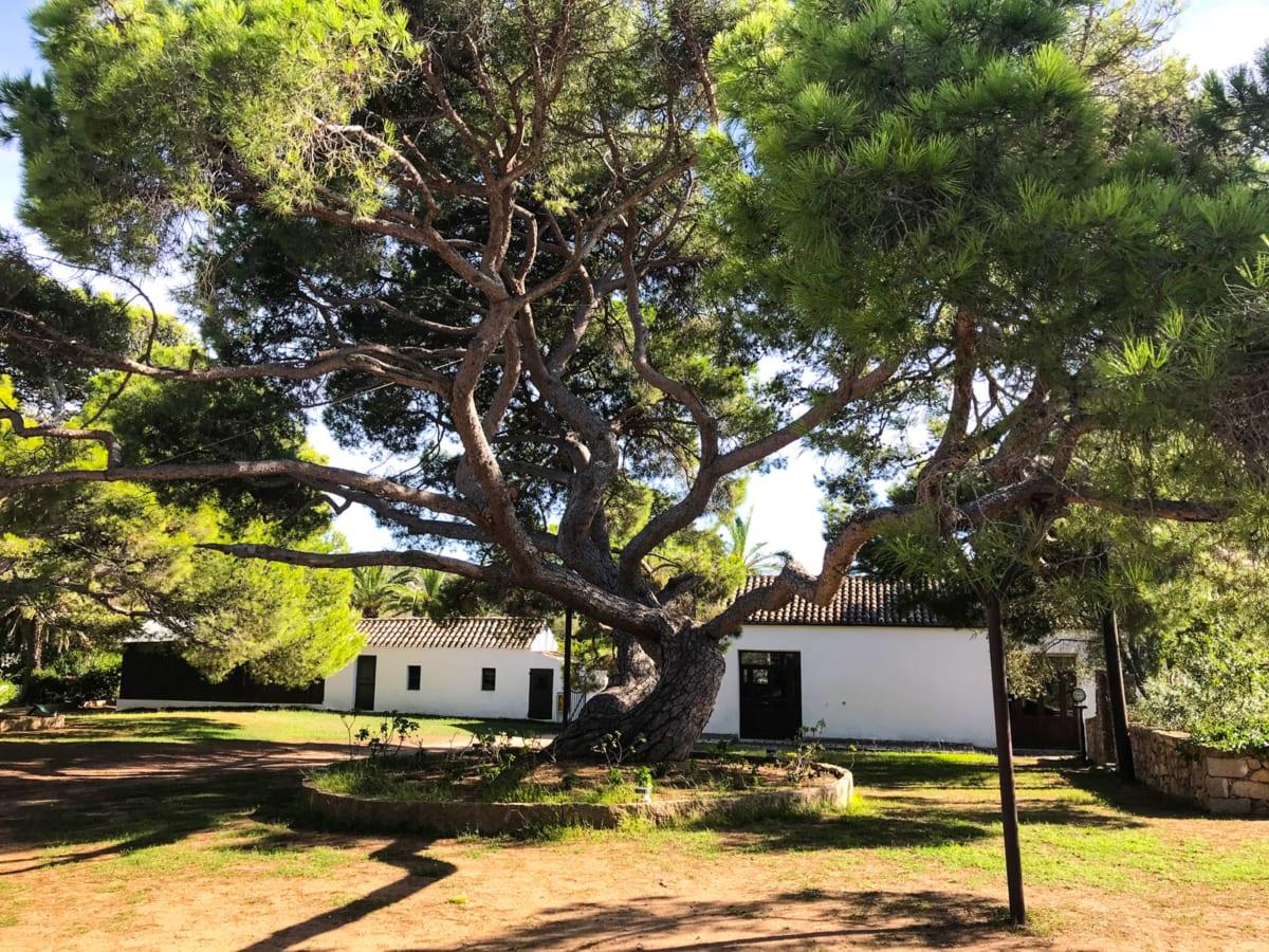 Pino Clelia casa di Garibaldi Caprera