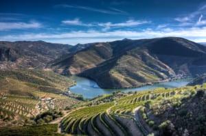 Valle del douro - Vino Porto