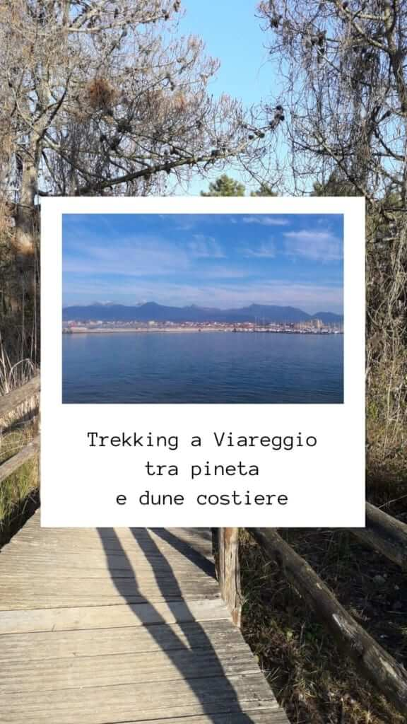 Trekking a Viareggio tra pineta e dune costiere