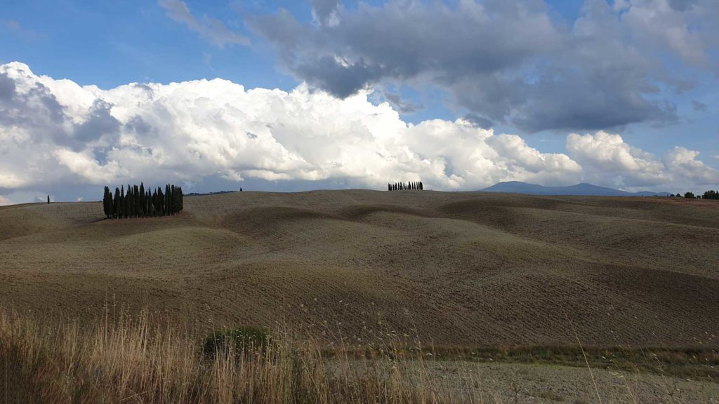 Val d'Orcia - Montalcino